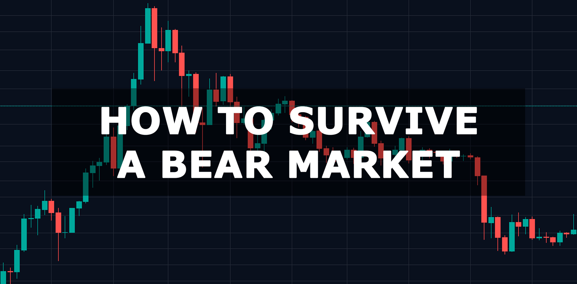 How to survive a bear market